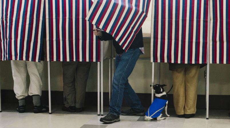 PORTLAND, ME - NOVEMBER 4: Bonnie MacInnis votes while her rat terrier/jack Russell mix named Theodore watches from the bottom of the voting booth at the Merrill Auditorium Rehearsal Hall in Portland, ME on Tuesday, November 4, 2014. (Photo by Whitney Hayward/Staff Photographer)