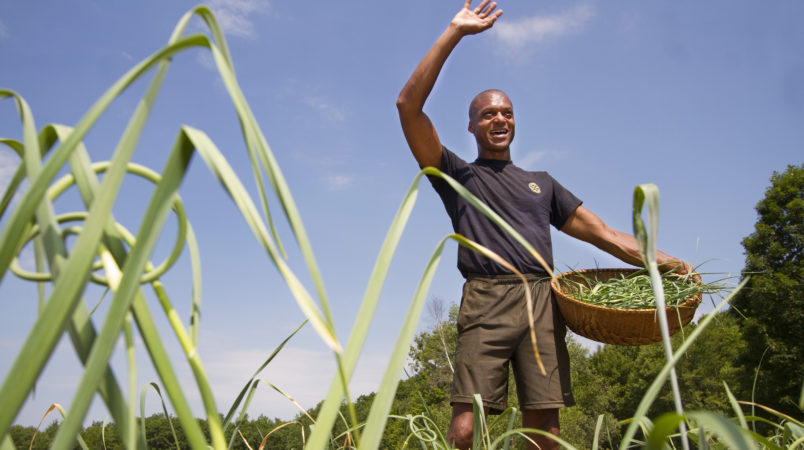 WINTHROP, ME - JUNE 30: Maine legislator, farmer and fierce advocate for Maine's sustainability movement, Craig Hickman waves to a neighbor while picking garlic scapes on his Annabessacook Farm in Winthrop. (Photo by Carl D. Walsh/Staff Photographer)