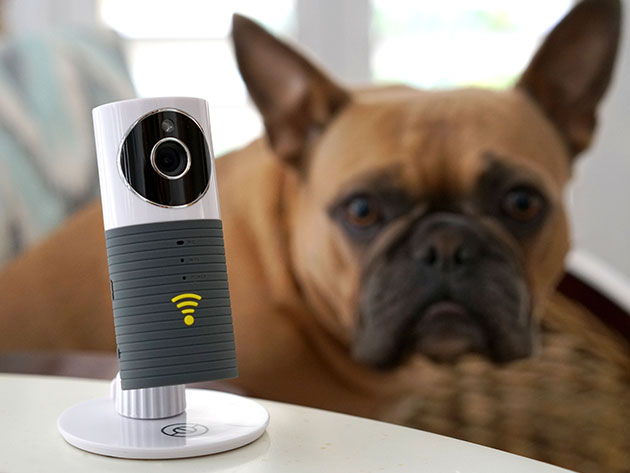 The Sinji Smart WiFi Camera is a high-resolution security camera that keeps an eye on your home, morning or night.