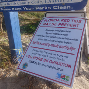 A red tide warning sing is seen at the Ocean Inlet Park in Ocean Ridge, Fla., Thursday, Oct. 4, 2018. Officials have confirmed that red tide has appeared on Florida's Atlantic Coast.  (Joe Cavaretta/South Florida Sun Sentinel/TNS)