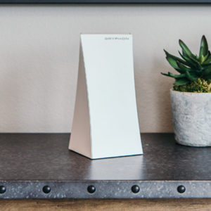Gryphon's Ultimate Secure Router is faster, smarter, and safer than other home WiFi security options.